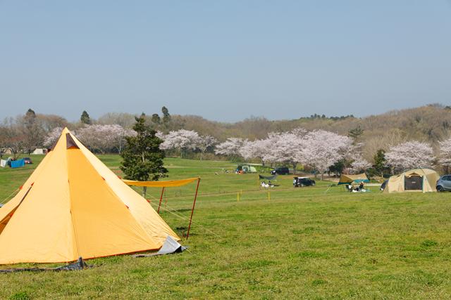 場 キャンプ 森 まき ば オート の